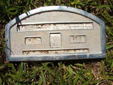 BEAL, CHARLIE WILL - Columbia County, Arkansas | CHARLIE WILL BEAL - Arkansas Gravestone Photos
