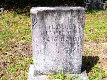 BRANDON, LUCY - Columbia County, Arkansas | LUCY BRANDON - Arkansas Gravestone Photos