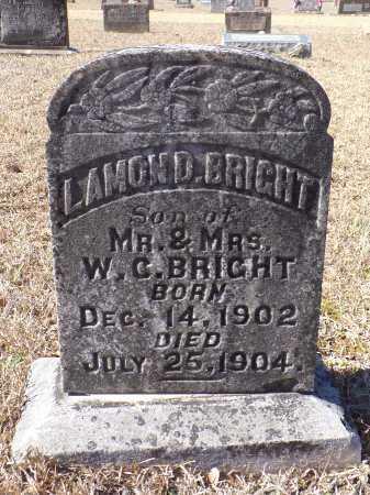 BRIGHT, LAMOND - Columbia County, Arkansas | LAMOND BRIGHT - Arkansas Gravestone Photos