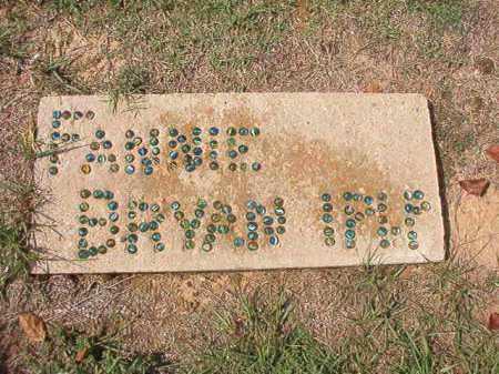 BRYAN, FANNIE - Columbia County, Arkansas | FANNIE BRYAN - Arkansas Gravestone Photos