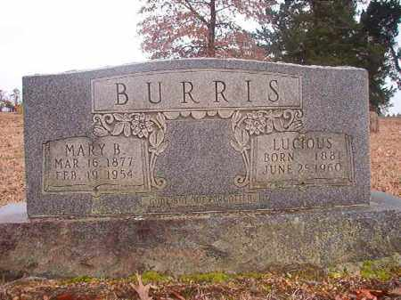 BURRIS, LUCIOUS - Columbia County, Arkansas | LUCIOUS BURRIS - Arkansas Gravestone Photos