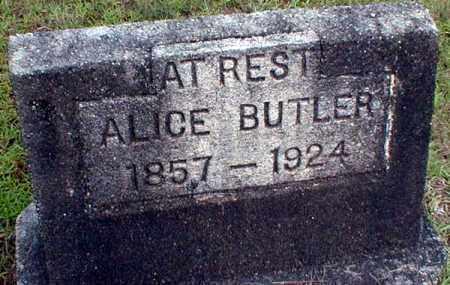 BUTLER, ALICE - Columbia County, Arkansas | ALICE BUTLER - Arkansas Gravestone Photos