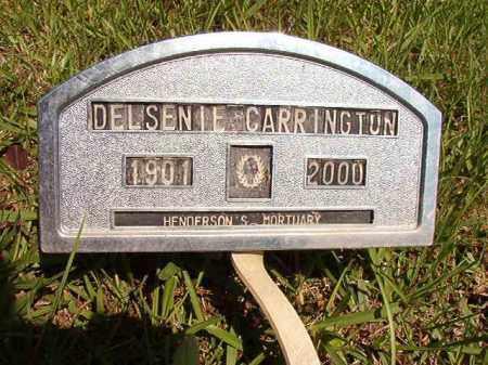 CARRINGTON, DELSENIE - Columbia County, Arkansas | DELSENIE CARRINGTON - Arkansas Gravestone Photos