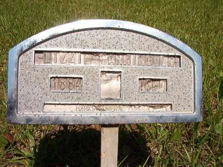CARRINGTON, LIZZIE - Columbia County, Arkansas | LIZZIE CARRINGTON - Arkansas Gravestone Photos