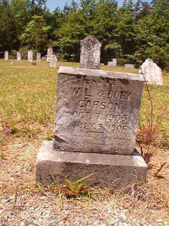 CARSON, LESTER - Columbia County, Arkansas | LESTER CARSON - Arkansas Gravestone Photos