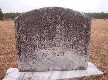 CARTER, ELIZABETH - Columbia County, Arkansas | ELIZABETH CARTER - Arkansas Gravestone Photos