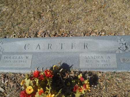 CARTER, SANDRA A - Columbia County, Arkansas | SANDRA A CARTER - Arkansas Gravestone Photos