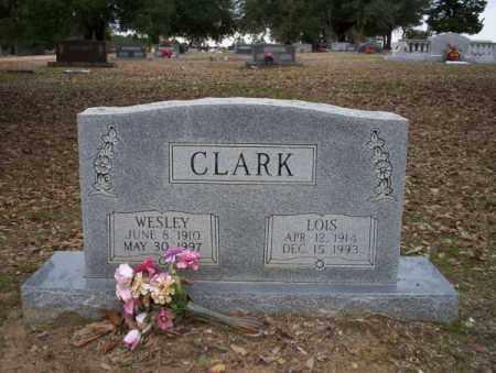 CLARK, LOIS - Columbia County, Arkansas | LOIS CLARK - Arkansas Gravestone Photos