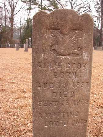 COOK, ALLIE - Columbia County, Arkansas | ALLIE COOK - Arkansas Gravestone Photos