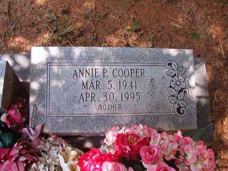 COOPER, ANNIE P - Columbia County, Arkansas | ANNIE P COOPER - Arkansas Gravestone Photos