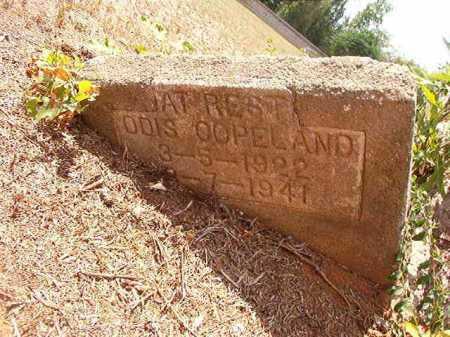 COPELAND, ODIS - Columbia County, Arkansas | ODIS COPELAND - Arkansas Gravestone Photos