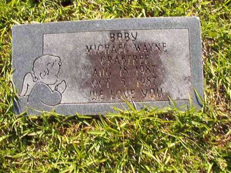 CRABTREE, MICHAEL WAYNE - Columbia County, Arkansas   MICHAEL WAYNE CRABTREE - Arkansas Gravestone Photos