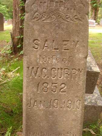 CURRY, SALEY - Columbia County, Arkansas   SALEY CURRY - Arkansas Gravestone Photos