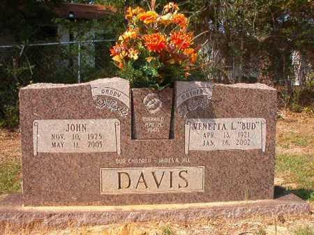 DAVIS, JOHN - Columbia County, Arkansas   JOHN DAVIS - Arkansas Gravestone Photos