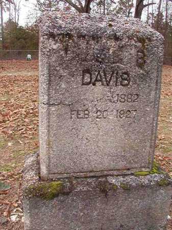 DAVIS, LIZZIE B - Columbia County, Arkansas | LIZZIE B DAVIS - Arkansas Gravestone Photos