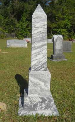 DENNIS, T J - Columbia County, Arkansas | T J DENNIS - Arkansas Gravestone Photos