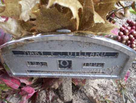 DILLARD, MARY F - Columbia County, Arkansas | MARY F DILLARD - Arkansas Gravestone Photos