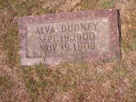 DUDNEY, ALVA - Columbia County, Arkansas | ALVA DUDNEY - Arkansas Gravestone Photos