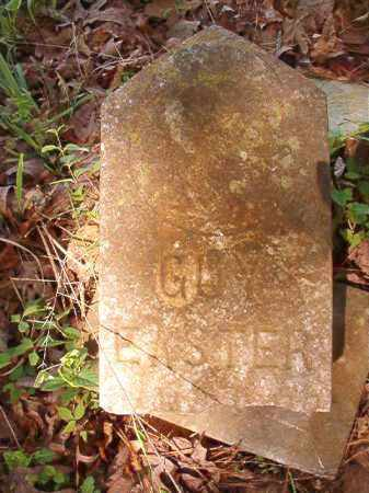EASTER, GUY - Columbia County, Arkansas | GUY EASTER - Arkansas Gravestone Photos
