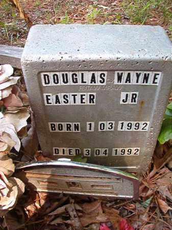 EASTER, JR, DOUGLAS WAYNE - Columbia County, Arkansas | DOUGLAS WAYNE EASTER, JR - Arkansas Gravestone Photos
