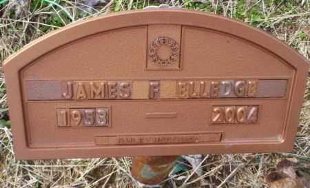 ELLEDGE, JAMES F - Columbia County, Arkansas | JAMES F ELLEDGE - Arkansas Gravestone Photos