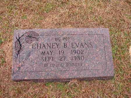 EVANS, CHANEY B - Columbia County, Arkansas | CHANEY B EVANS - Arkansas Gravestone Photos