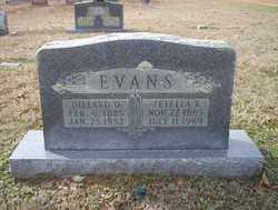 EVANS, ZEFELLA R - Columbia County, Arkansas | ZEFELLA R EVANS - Arkansas Gravestone Photos