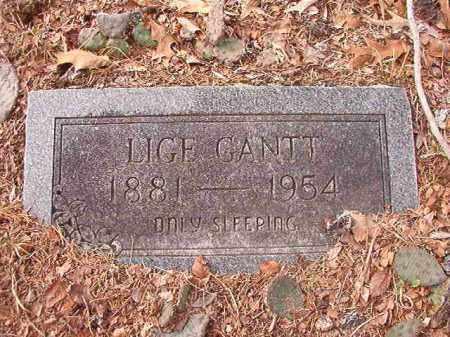 GANTT, LIGE - Columbia County, Arkansas   LIGE GANTT - Arkansas Gravestone Photos