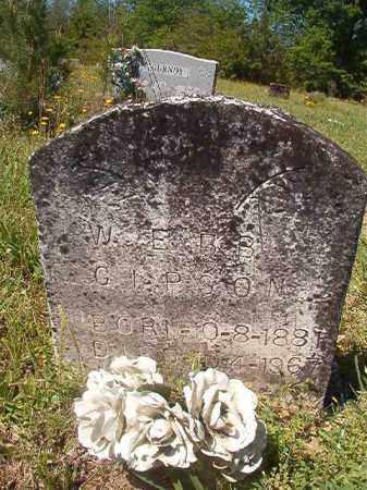 GIPSON, WEBB - Columbia County, Arkansas | WEBB GIPSON - Arkansas Gravestone Photos