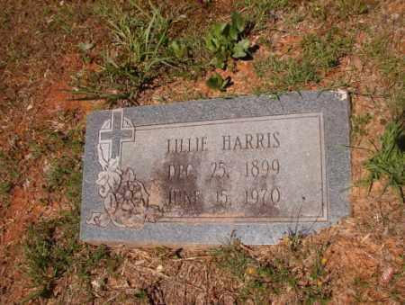 HARRIS, LILLIE - Columbia County, Arkansas | LILLIE HARRIS - Arkansas Gravestone Photos