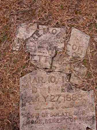 HARTON, SUSIE - Columbia County, Arkansas | SUSIE HARTON - Arkansas Gravestone Photos