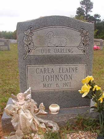 JOHNSON, CARLA ELAINE - Columbia County, Arkansas | CARLA ELAINE JOHNSON - Arkansas Gravestone Photos
