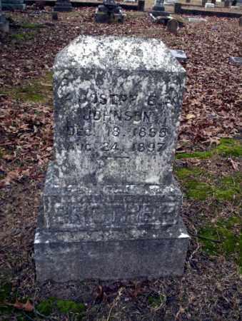 JOHNSON, JOSEPH E - Columbia County, Arkansas | JOSEPH E JOHNSON - Arkansas Gravestone Photos