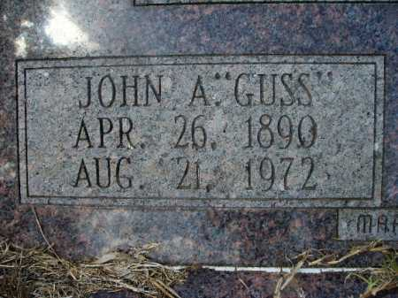 "JOHNSON, JOHN A ""GUSS"" (CLOSEUP) - Columbia County, Arkansas 