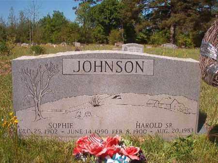 JOHNSON, SOPHIE - Columbia County, Arkansas   SOPHIE JOHNSON - Arkansas Gravestone Photos
