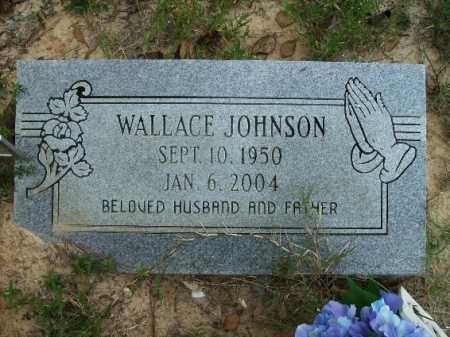 JOHNSON, WALLACE - Columbia County, Arkansas | WALLACE JOHNSON - Arkansas Gravestone Photos