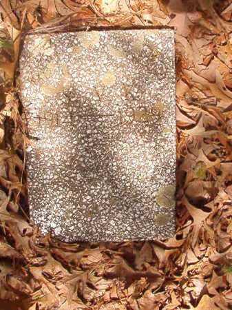 KEENER, S V - Columbia County, Arkansas | S V KEENER - Arkansas Gravestone Photos