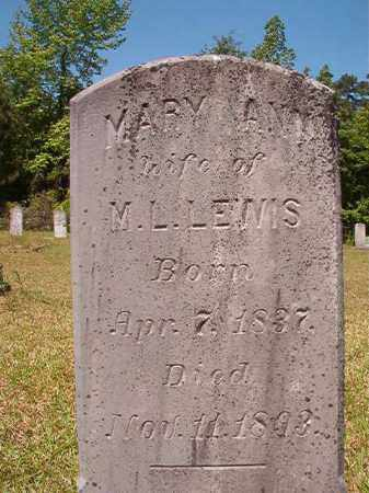 LEWIS, MARY ANN - Columbia County, Arkansas | MARY ANN LEWIS - Arkansas Gravestone Photos