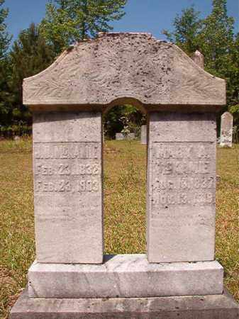 MCKAMIE, MARY A - Columbia County, Arkansas | MARY A MCKAMIE - Arkansas Gravestone Photos