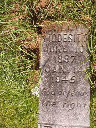 MODESITT, RILLY - Columbia County, Arkansas | RILLY MODESITT - Arkansas Gravestone Photos