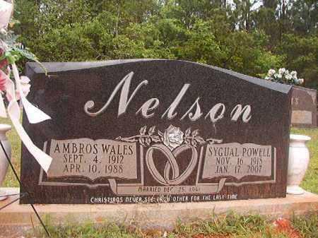 POWELL NELSON, SYGUAL - Columbia County, Arkansas | SYGUAL POWELL NELSON - Arkansas Gravestone Photos