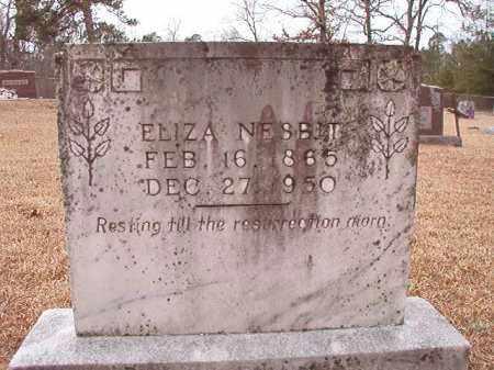 NESBIT, ELIZA - Columbia County, Arkansas | ELIZA NESBIT - Arkansas Gravestone Photos