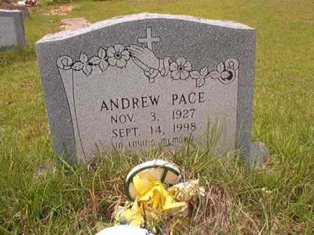 PACE, ANDREW - Columbia County, Arkansas | ANDREW PACE - Arkansas Gravestone Photos