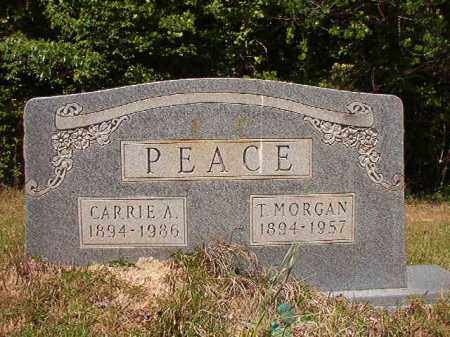 PEACE, T MORGAN - Columbia County, Arkansas   T MORGAN PEACE - Arkansas Gravestone Photos