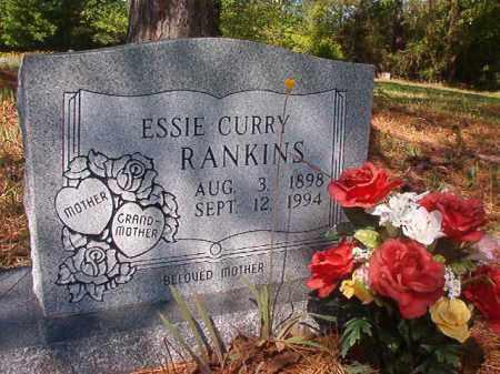 CURRY RANKINS, ESSIE - Columbia County, Arkansas | ESSIE CURRY RANKINS - Arkansas Gravestone Photos