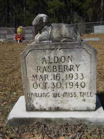 RASBERRY, ALDON - Columbia County, Arkansas | ALDON RASBERRY - Arkansas Gravestone Photos