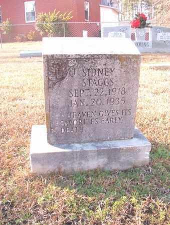 STAGGS, SIDNEY - Columbia County, Arkansas | SIDNEY STAGGS - Arkansas Gravestone Photos