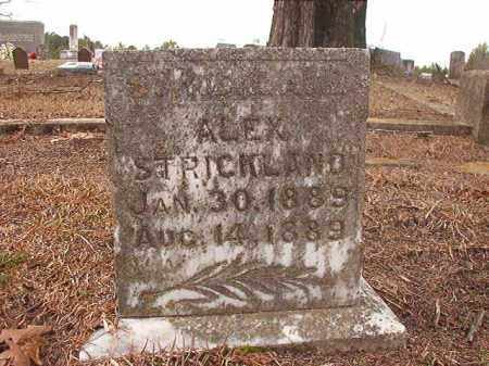 STRICKLAND, ALEX - Columbia County, Arkansas | ALEX STRICKLAND - Arkansas Gravestone Photos