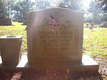ADKINS TERRELL, EUGENIA P - Columbia County, Arkansas | EUGENIA P ADKINS TERRELL - Arkansas Gravestone Photos