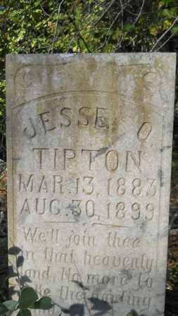 TIPTON, JESSE O - Columbia County, Arkansas   JESSE O TIPTON - Arkansas Gravestone Photos